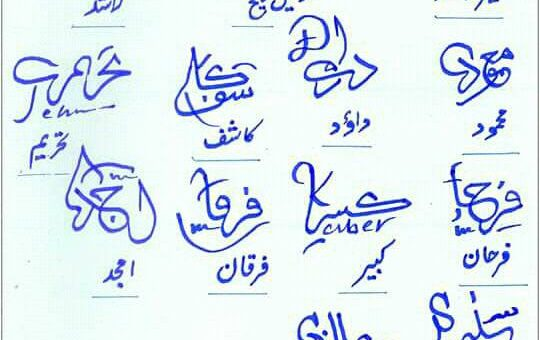 Different Signatures in Urdu 2
