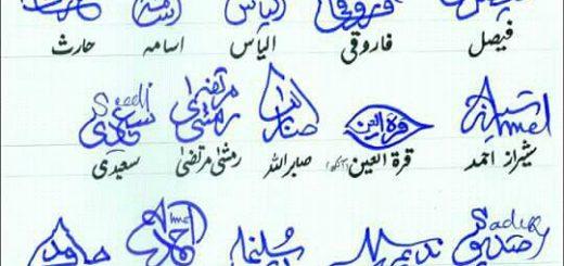 Different Signatures in Urdu