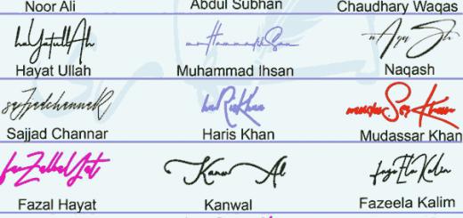 Handwritten Signature Collection