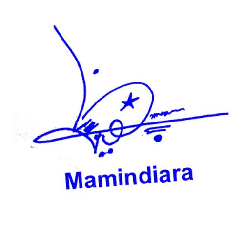 Mamindiena Online Signature Style