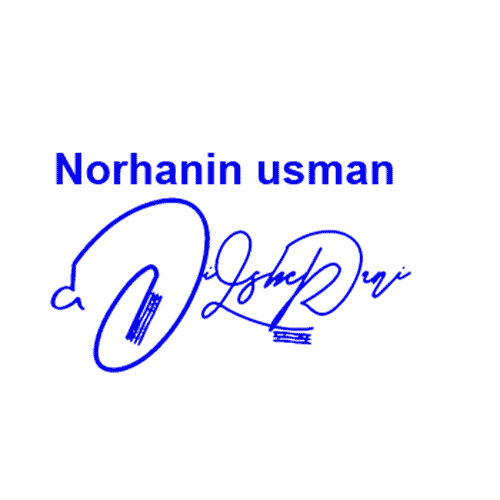 Norhanin Usman Online Signature Style