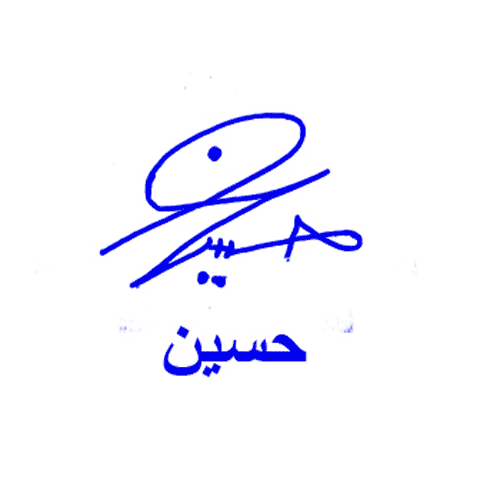 Hussien Online Signature Style