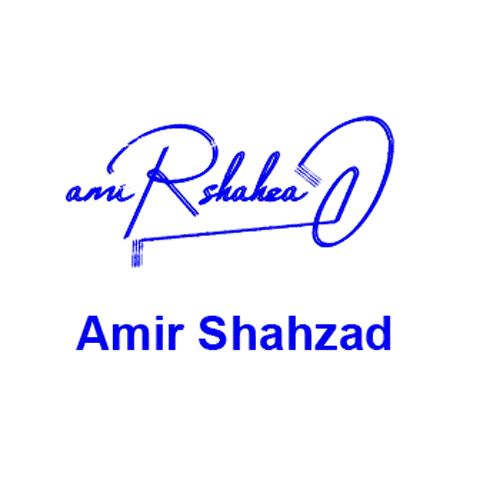 Amir Shahzad Online Signature Style