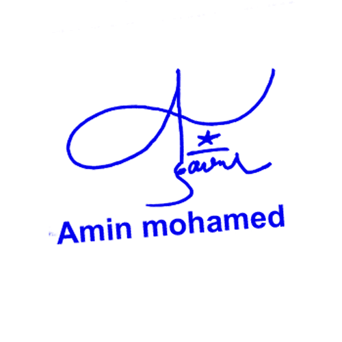 Amin Mohamed Online Signature Style