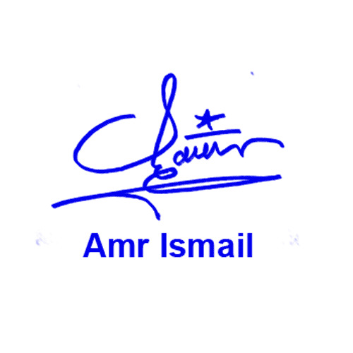 Amr Ismail Online Signature Style